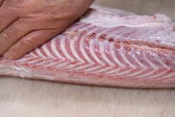 日本海 サメ焼き漬け いそべ食堂