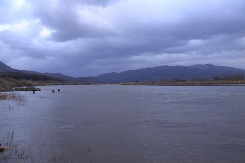 荒川サクラマス釣り 荒川の濁り具合