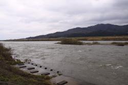 荒川サクラマス釣り