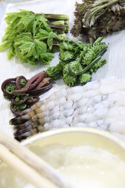 揚げたて天ぷら 山菜