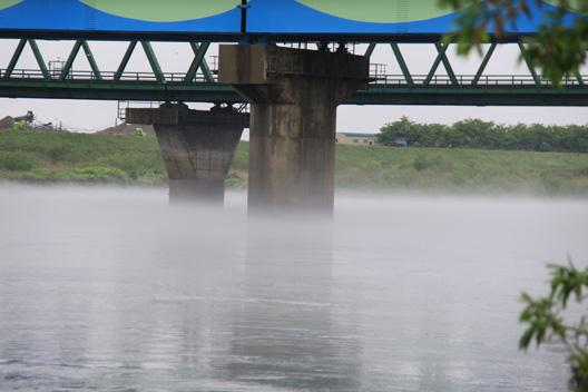 荒川サクラマス釣り 霧の荒川
