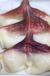 黒ホッキ貝刺身