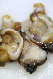 甘くて美味しい 黒ホッキ貝刺身