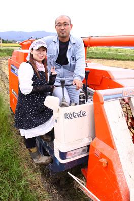 岩船産コシヒカリ 稲刈り 2010