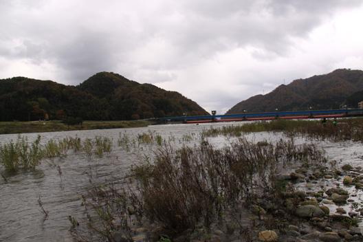 荒川鮭釣り 解禁日 11月10日