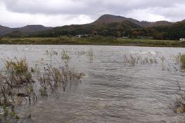 2010荒川鮭釣り解禁日