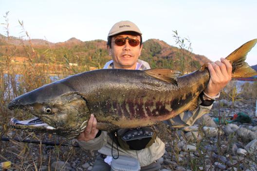 2010荒川鮭釣り12月2日