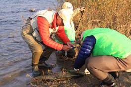 荒川鮭釣り12月2日