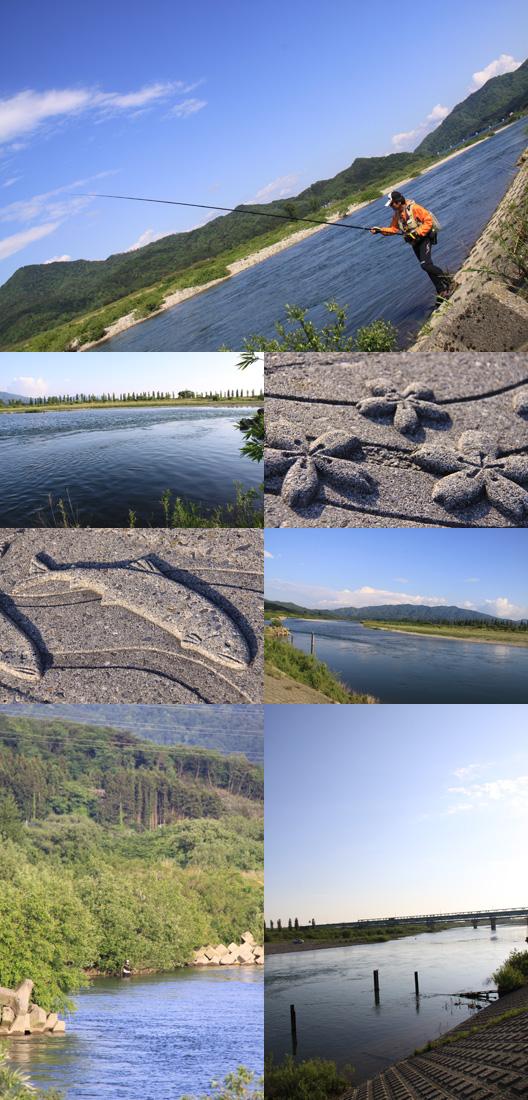 2010 荒川サクラマス釣り 最終日
