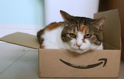 猫 Amazon段ボール