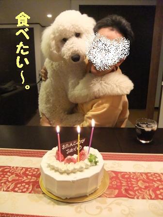 父しゃん誕生日