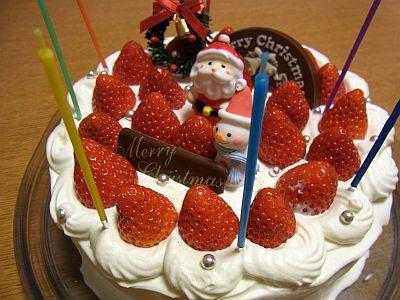 さぐーのクリスマスケーキ