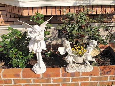 花壇ムルチコーレ
