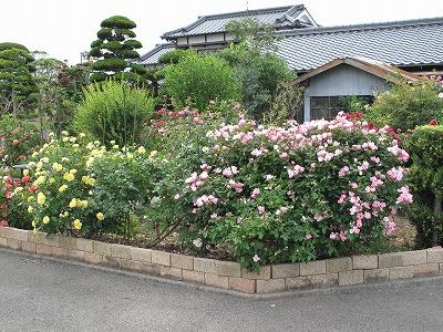 s-川村1