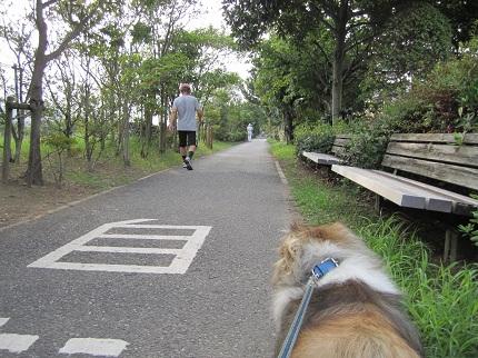 ライムと散歩