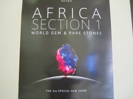 アフリカポスター