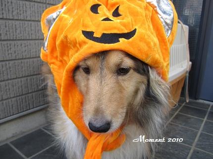 ライムかぼちゃ