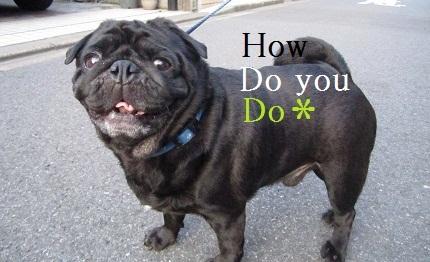 how do yo do