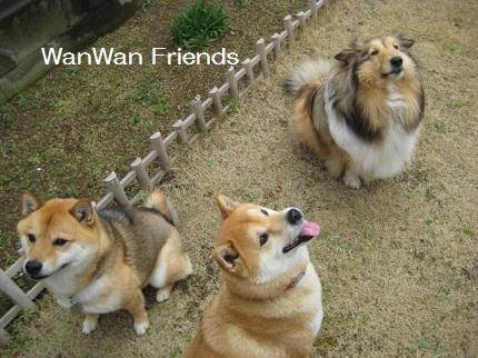 wanwanfriends.jpg