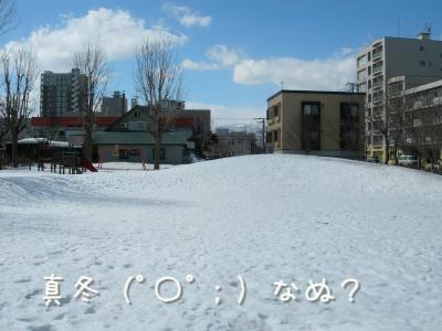 DSCN2334_convert_20100319190836.jpg