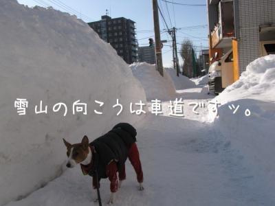 IMG_4243_convert_20110119202900.jpg