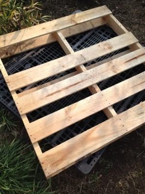 2014.2.2鶏小屋製作5