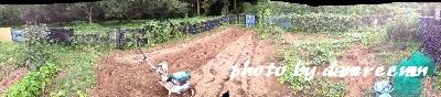 2014.9.27開墾地9