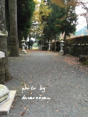 2014.11.8国造神社3