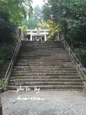 2014.11.8国造神社5