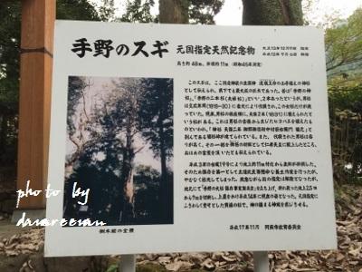 2014.11.8国造神社8