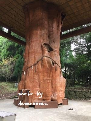 2014.11.8国造神社10