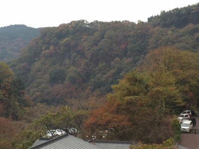 2014.11.8九重3