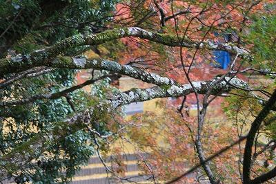 2014.11.8竜門の滝7