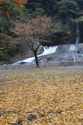 2014.11.8竜門の滝8