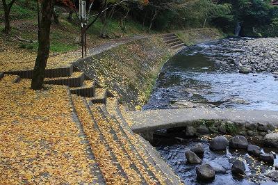 2014.11.8竜門の滝23