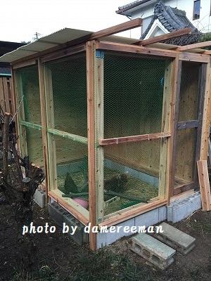 2014.11.22鶏小屋6