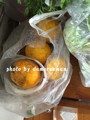 2014.12.6柚子胡椒