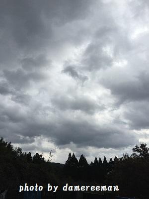 2014.12.13開墾地3