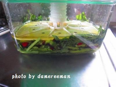 2014.12.20壬生菜2