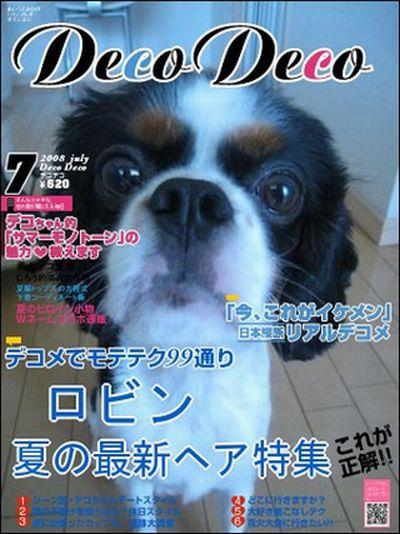 decojiro-20100717-114214.jpg