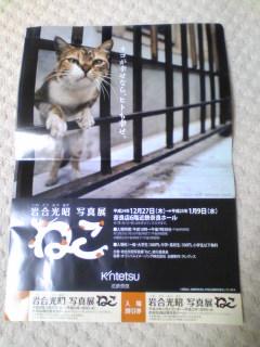 007_20130105220919.jpg