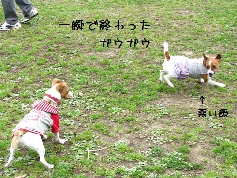 IMG_9475.jpg
