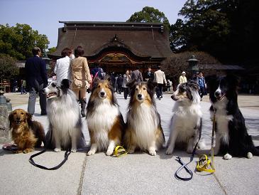 福岡遠征10