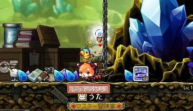 Maple110307_201044.jpg