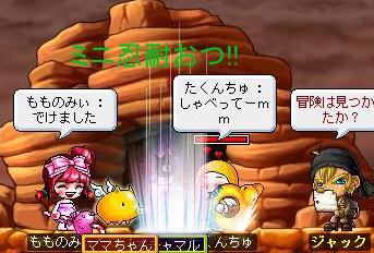 Maple110328_051919.jpg