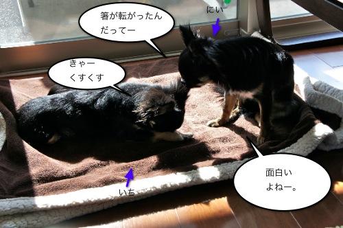 2012032202.jpg