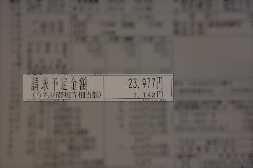 DSC01277.jpg