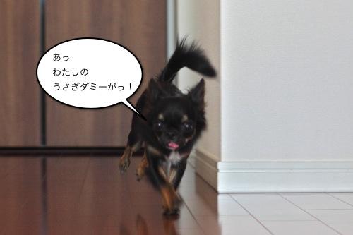 ichi_9166.jpg