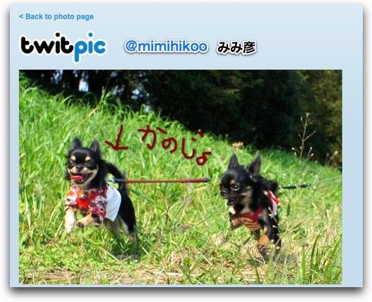 twitpic-2.jpg