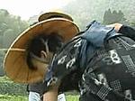 【素人】農作業中の胸チラに欲情して中出しされちゃう農家の嫁